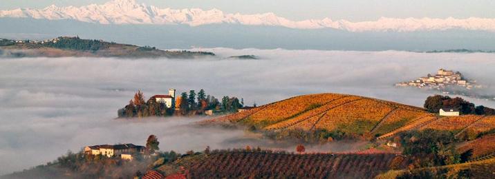 Piedmont: The Fogs of Barolo and Barbaresco.
