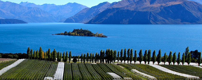New Zealand: The French countryside