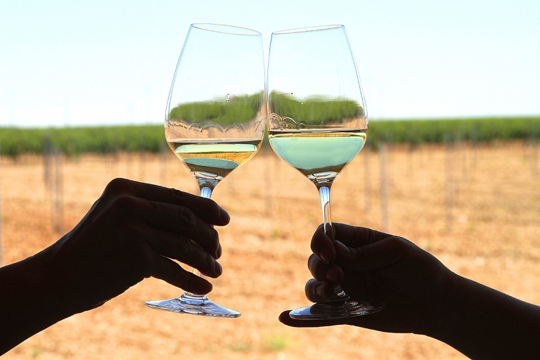 Verdejo: the grape from the Rueda region and the variety of Finca Montepedroso