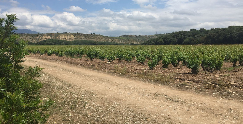 Finca Valpiedra and its special natural setting