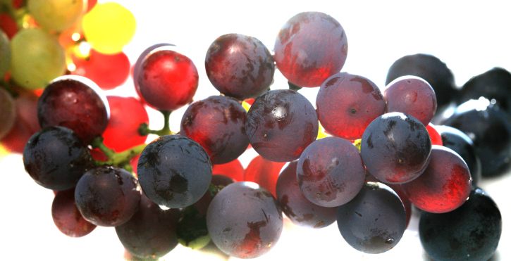 El envero: la uva cambia de color