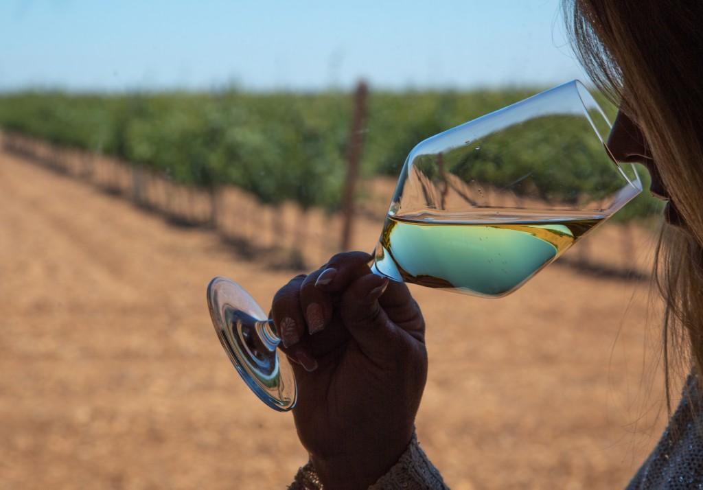 The Power of Wine Aromas